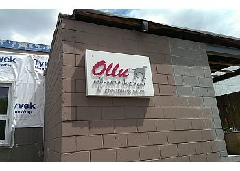 Minneapolis pet grooming Ollu Dog Wash & Grooming Salon