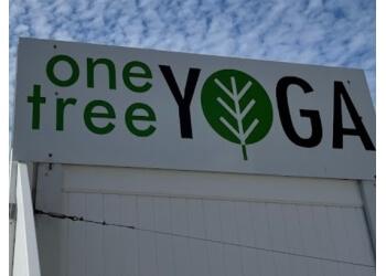 Omaha yoga studio One Tree Yoga