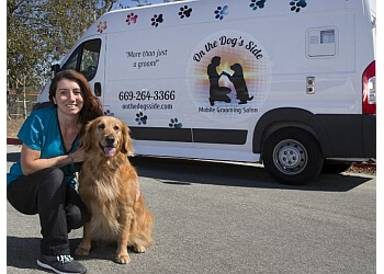 Sunnyvale pet grooming On the Dog's Side Mobile Grooming