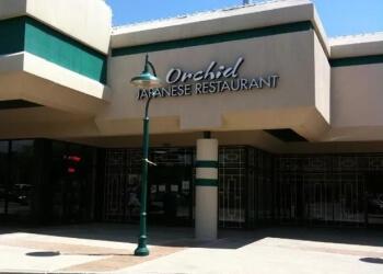 Raleigh japanese restaurant Orchid Japanese Restaurant