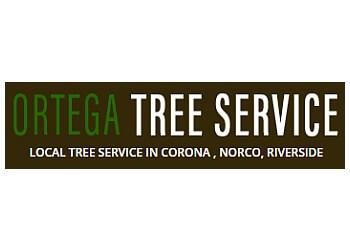 Corona lawn care service Ortega Tree Service and Lawn Maintenance