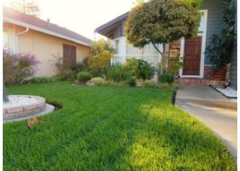 Modesto lawn care service Ortiz Lawn Care
