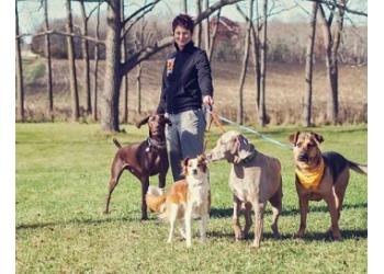 Madison dog walker Out-U-Go! Pet Care