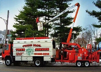 New York tree service Owens Bros Tree Service Ltd.