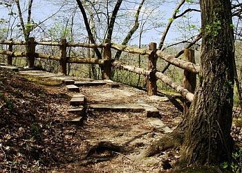 Cedar Rapids hiking trail Palisades-Kepler State Park Trail