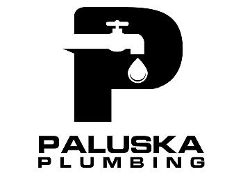 Peoria plumber Paluska plumbing