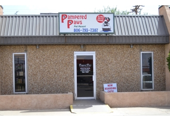 Lubbock pet grooming Pampered Paws