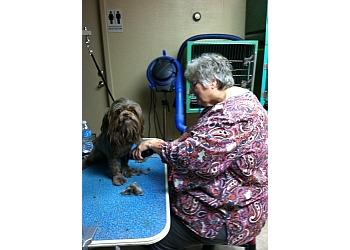 Corpus Christi pet grooming Pampered Pets & Grooming