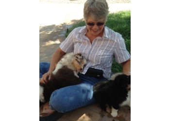 Albuquerque dog walker Pampered Pooches & Other Pets LLC