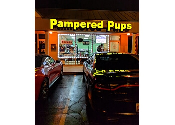 Joliet pet grooming Pampered Pups