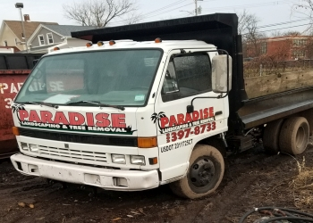 New Haven tree service Paradise Landscaping & Tree Removal