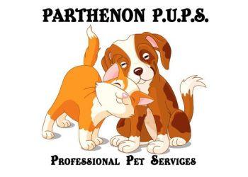 Nashville dog walker Parthenon P.U.P.S. Professional Pet Services