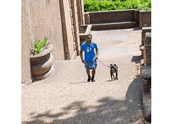Washington dog walker Patrick's Pet Care