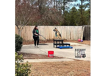 Fayetteville dog training Patriot K-Nine, LLC Dog Training
