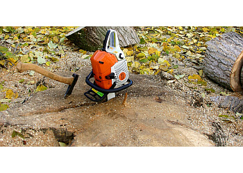 Anchorage tree service Paul's Tree Service