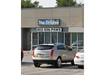 Omaha pet grooming Paw Paradise Spa