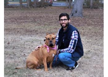 Chesapeake dog walker Pawesome Playdates