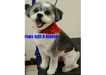 Savannah pet grooming Paws Bath N Beyond