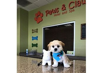 Laredo pet grooming Paws & Claws Hotel and Spa