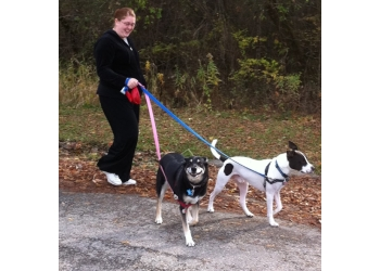 Madison dog walker Paws and Claws Dog Walking & Pet Service