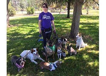 San Jose dog walker Pawzercize