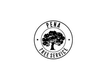 Oceanside tree service Pena Tree Services