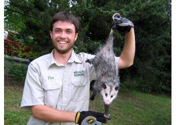 San Francisco animal removal Pest Animal Removal San Francisco