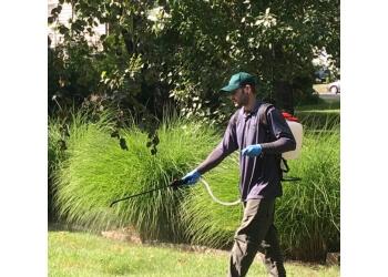 Pembroke Pines pest control company Pest Control Pros