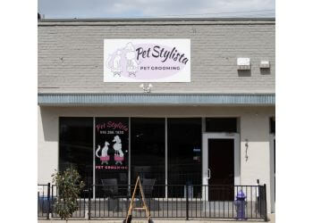 Sacramento pet grooming Pet Stylista
