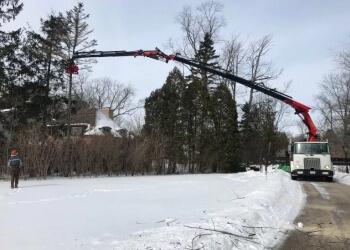 Milwaukee tree service Peterson's Tree Care