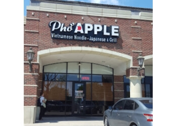 Plano vietnamese restaurant Pho Apple