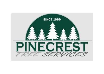 Philadelphia tree service Pinecrest Tree Services
