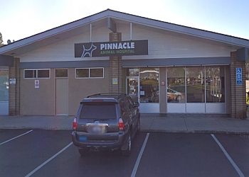 San Jose veterinary clinic Pinnacle Animal Hospital