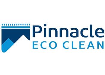 Rochester carpet cleaner Pinnacle Eco Clean, Inc