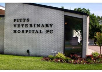 Lincoln veterinary clinic Pitts Veterinary Hospital