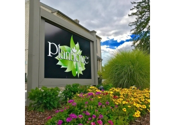 Allentown landscaping company Plantique Landscaping Inc.