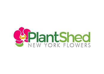 New York florist Plantshed