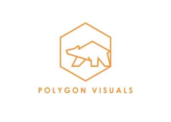 Polygon Visuals