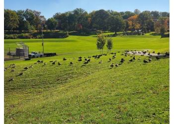 Hartford public park Pope Park