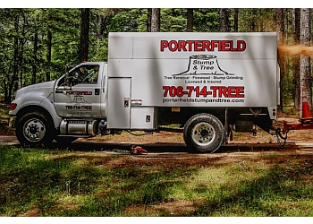 Athens tree service Porterfield Stump & Tree