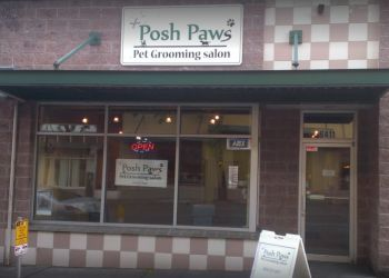 Seattle pet grooming Posh Paws Grooming Salon