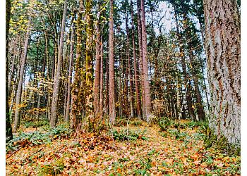 Portland hiking trail Powell Butte Nature Park