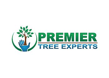 Orange tree service Premier Tree Experts