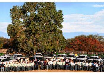 Arlington landscaping company Prime Landscape Services