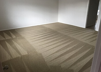 3 Best Carpet Cleaners In Killeen Tx Threebestrated