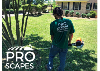 Athens lawn care service Pro Scapes LLC