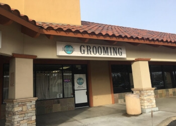 Oceanside pet grooming Pup Culture Pet Spaw