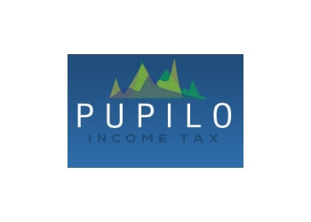 Yonkers tax service Pupilo Agency