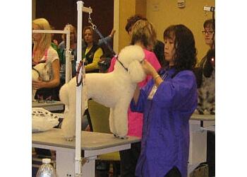 Winston Salem pet grooming  Puttin On the Petz