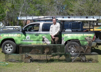 Jacksonville animal removal Quick Catch